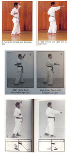 Figure 7. An example of minor differences in kata performance between schools of Goju-ryu. This shows the first two techniques in Gekisai Ichi.  The Jundokan version (top; from Okinawa Den Gojuryu Karate-do by Ei'ichi Miyazato ) uses a high punch, whereas the Meibukan (middle; Karate Goju Ryu Meibukan by Lex Opdam) and Shorei-kan (bottom; from Okinawan Goju Ryu: The Fundamentals of Shorei-kan Karate by Seikichi Toguchi) versions use a middle punch.